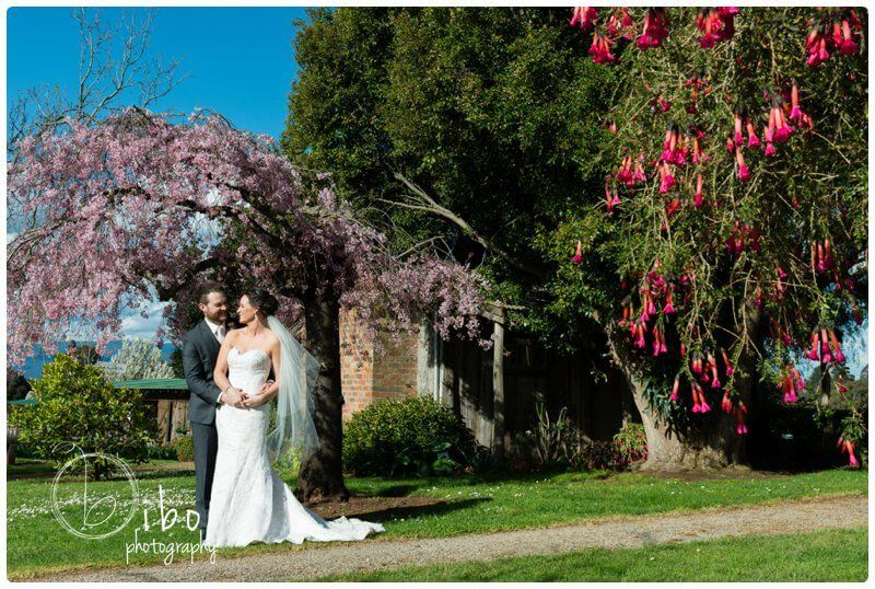 Yarra Valley wedding photographer